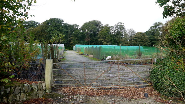 Burncoose Nurseries stock beds and tunnels