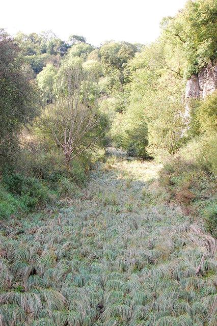 River Hamps - river of sedge