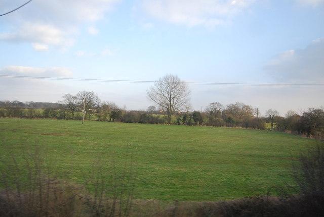 Field near Bolton Farm