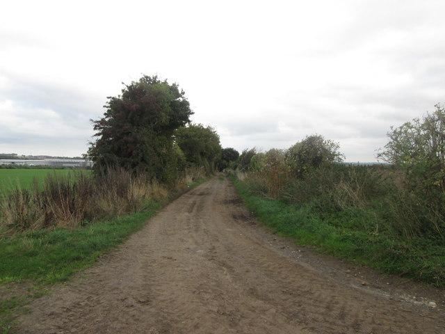 The Dearne Way towards Edderthorpe