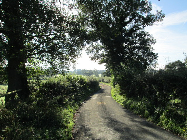 Country lane near Gratton