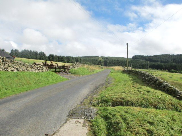 The road to Loch Ettrick
