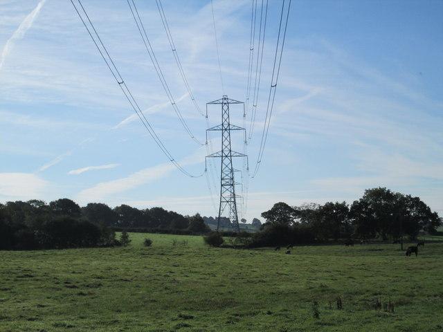Electricity pylons near Horton Brook