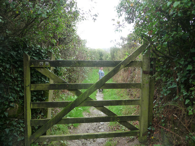 Gate on track to Black Head