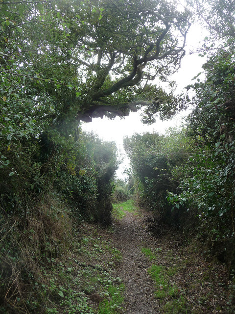 Track heading towards Black Head