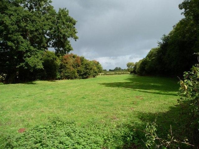 Farmland west of the A449
