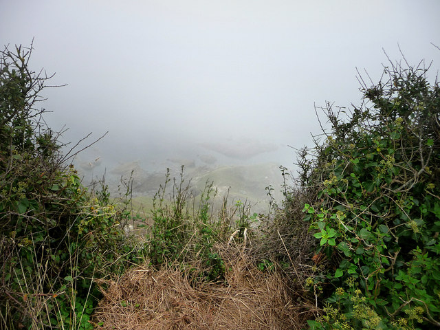Misty view of the coast