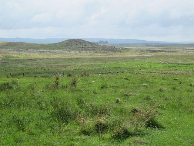 Moorland east of Black Stitchel