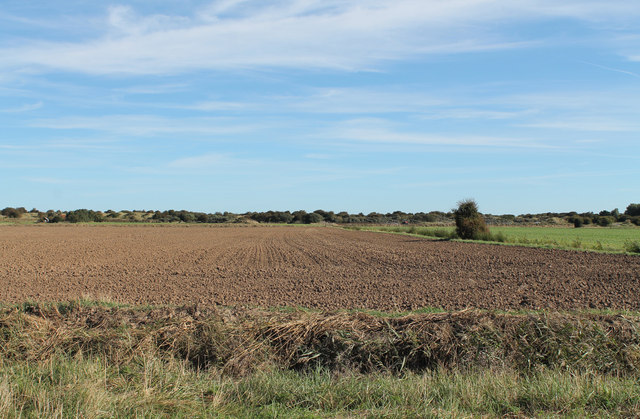 Flat farmland towards the coast