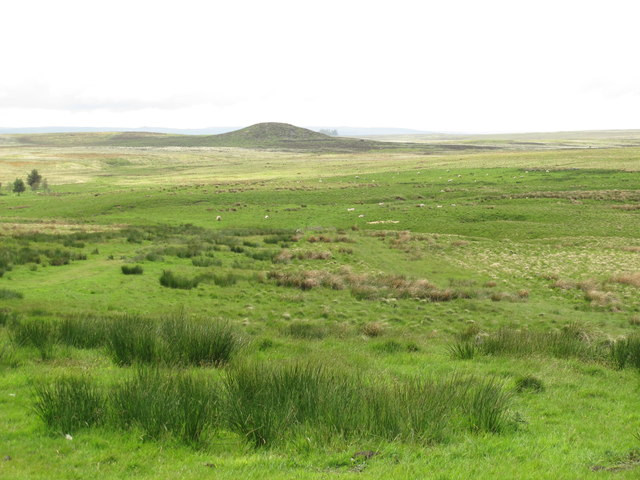 Moorland east of Black Stitchel (2)