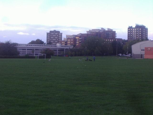 Flats by King Edward VII Park
