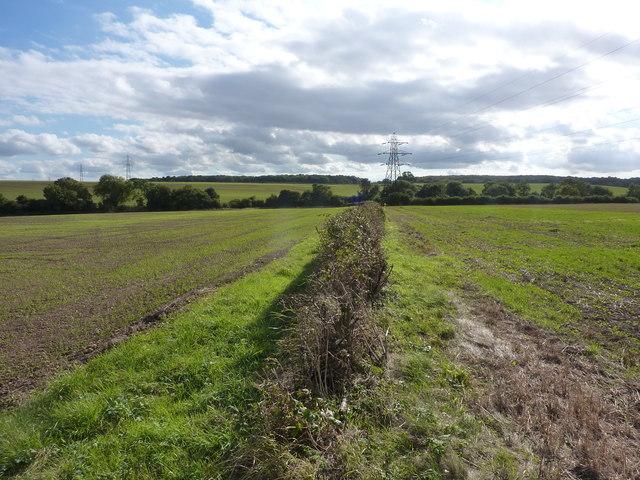 Pylons on farmland