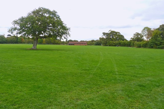 Playing Fields at Woodside