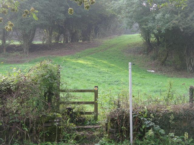 Footpath at Coleford