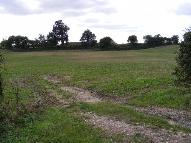 Field entrance off the B1332 Norwich Road