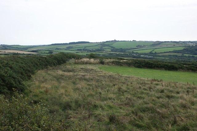 Rough pasture near Upper Eweston