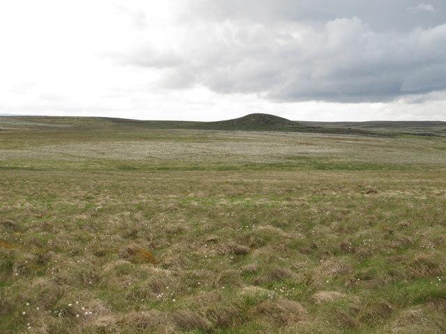 Moorland southeast of Black Stitchel