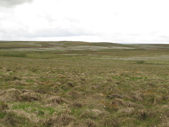 Moorland west of Black Hill