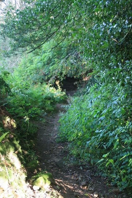 Bridleway near Kelstedge