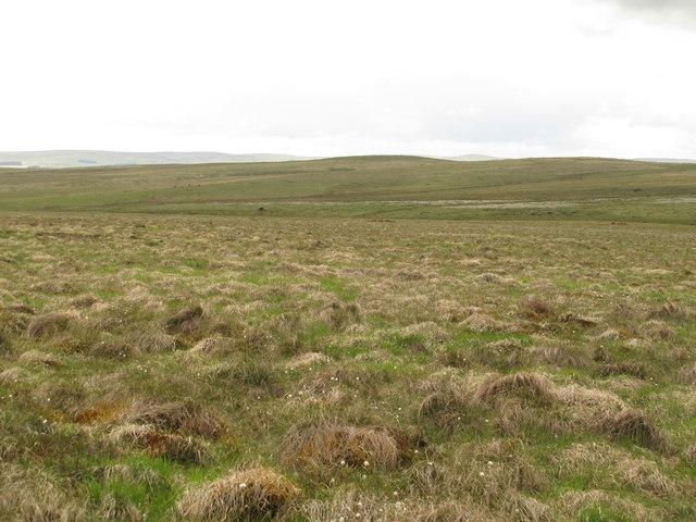 Moorland east of Greencleugh Pike