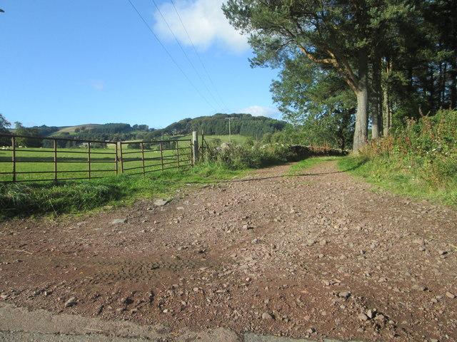 Track at Warrenhill