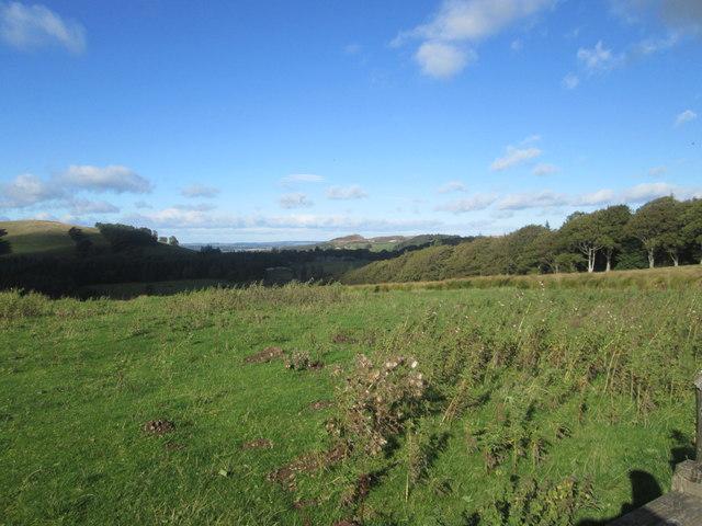Rough grasslands at Carmichael