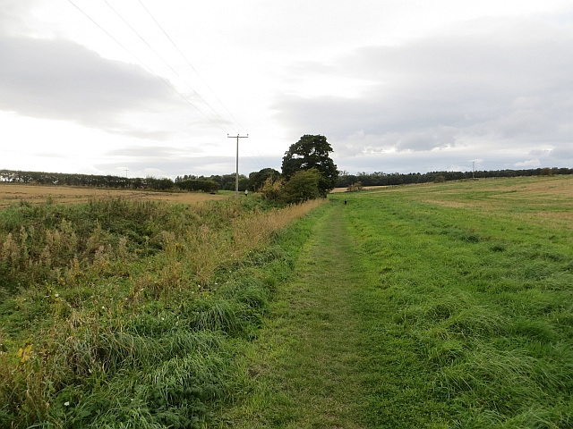 Path to Letham Holdings