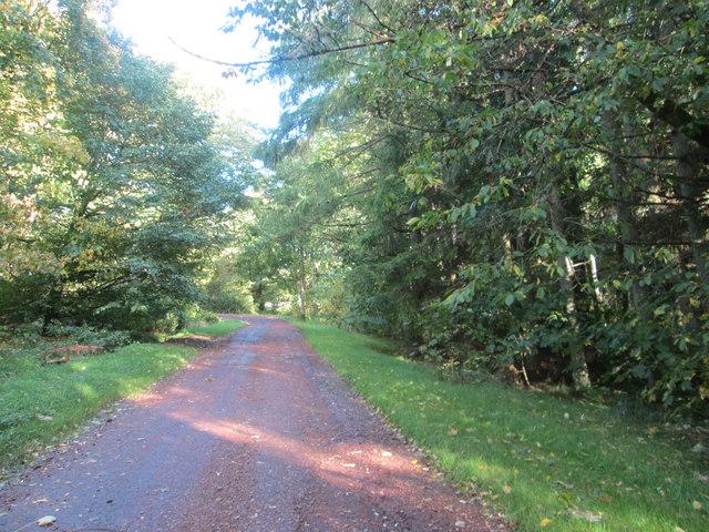 Carmichael Estate road