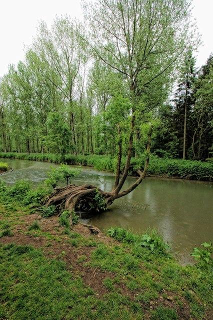 The River Windrush, Minster Lovell