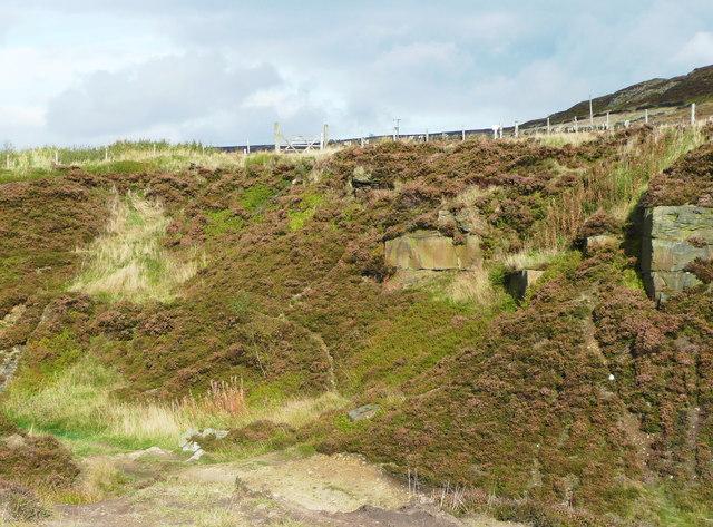 Quarry on Little Moor