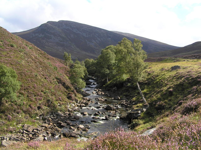 Callater Burn River