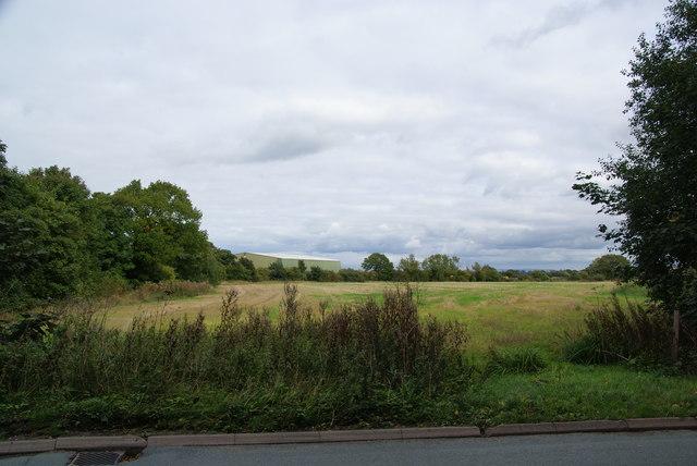 Farmland by Beehive Farm