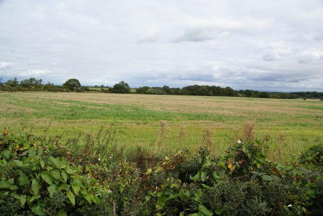 Farmland by Barleycastle Lane