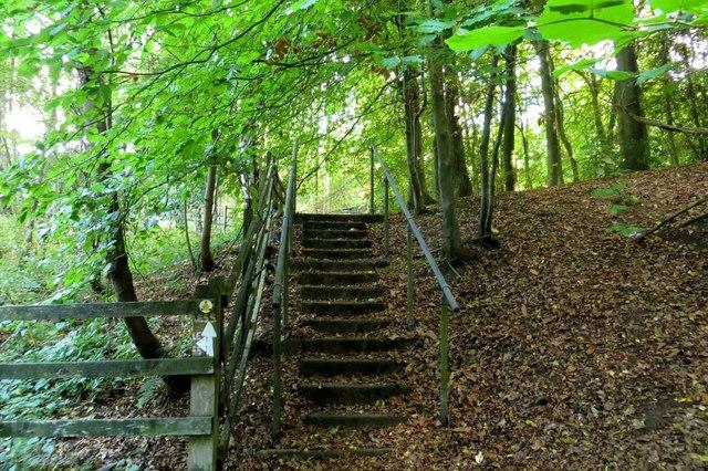 Footpath through Pound Wood