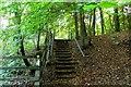 SU7892 : Footpath through Pound Wood by Steve Daniels