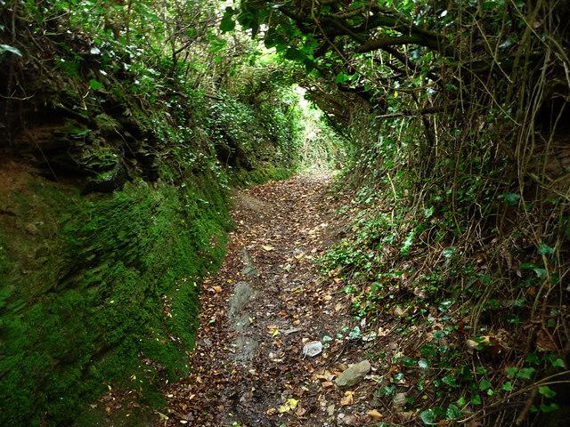 Footpath, Ledrah