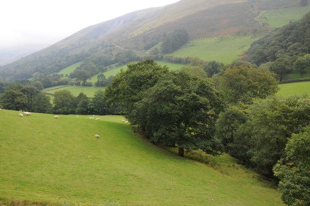 Dovey valley near Llanymawddwy