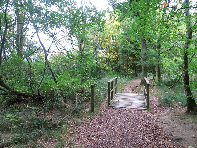 Bridge, Butterdean Wood
