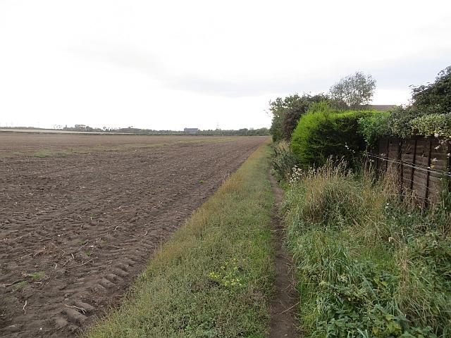 Field edge, Port Seton