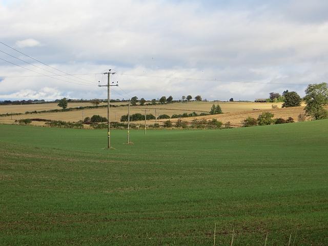 Field east of Balbeggie
