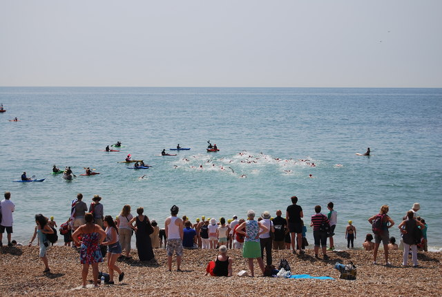Open Water Swimmers
