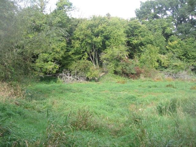 Popley Ponds Local Nature Reserve