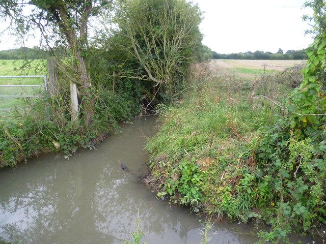 Drainage ditch near Goldwell Farm