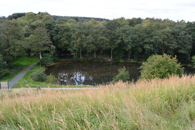 Lower Brindley Pool