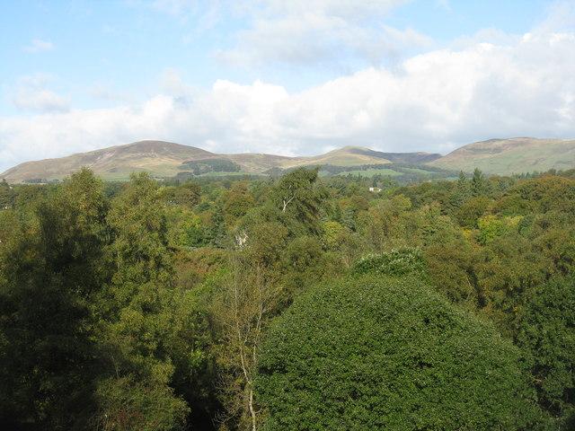 North Esk Valley woodland