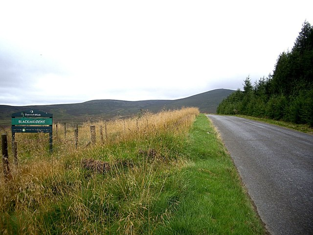 Scottish Forest Alliance notice by A941