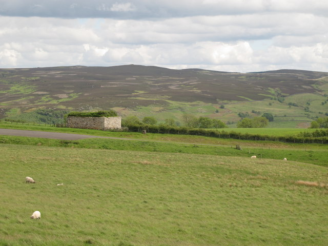Moorland around High Shaw bastle