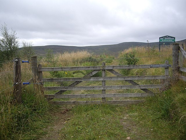 A gated track to Blackmiddens croft