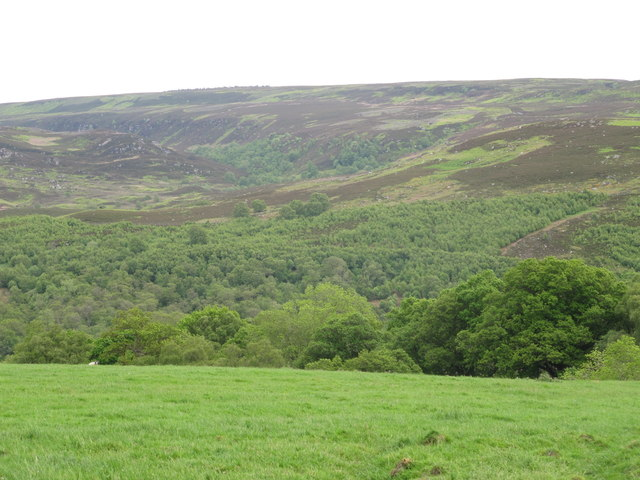 Farmland above the wooded valleys of Penchford and Grasslees Burns (2)