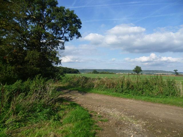 Footpath near Offham